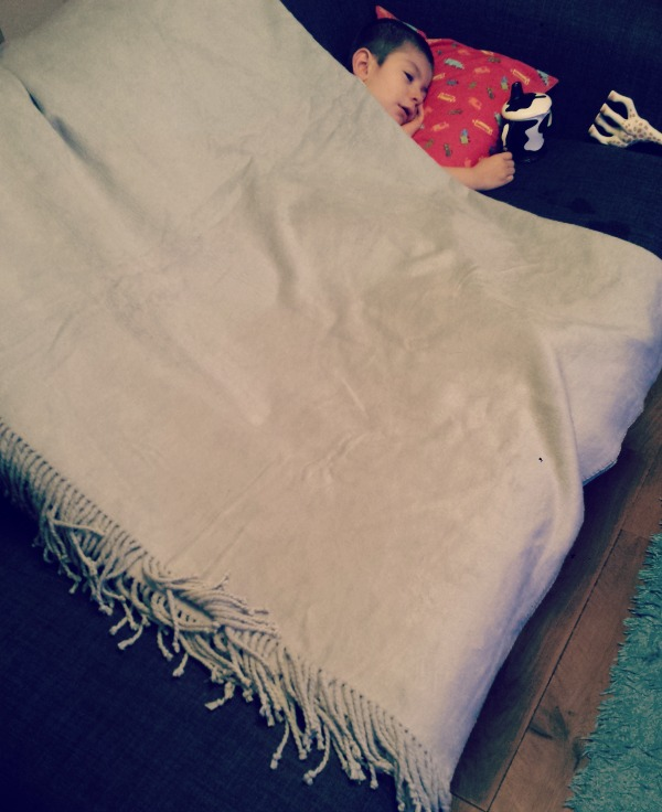 duvet and pillow warehouse review