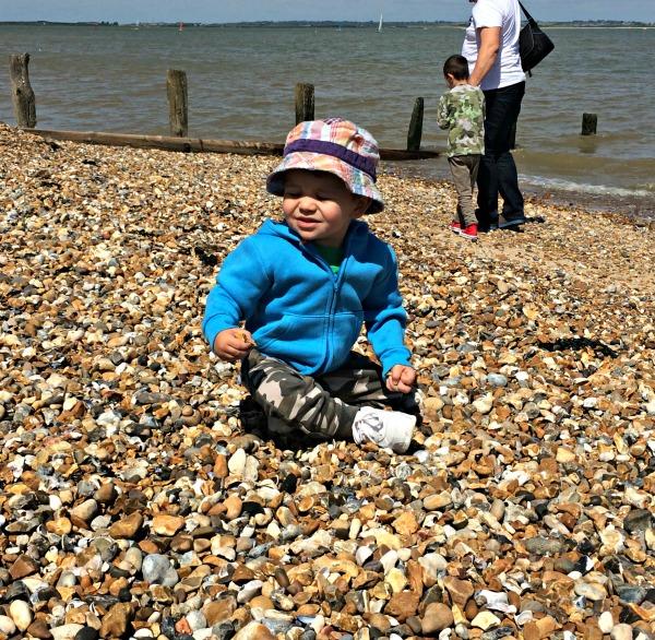Deacon at the beach